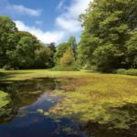 arbigland-grounds