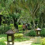 The peaceful tropical grounds surrounding Spa Village