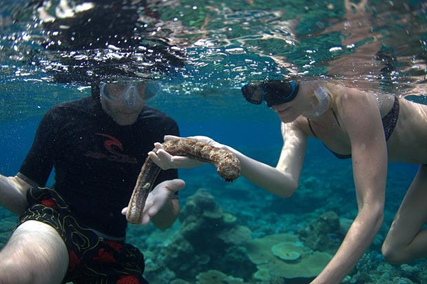 Fabien Cousteau and Kate Bosworth snorkeling. Photographer Scott Needham