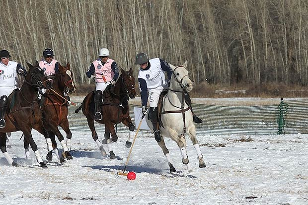 Piaget and Audi host the 11th annual World Snow Polo Championship in Aspen