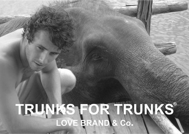 Luxury swimwear company Love Brand & Co join Elephant Family to help save elephants.
