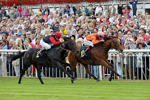 This year, for the second time after 2011, the Kincsem Race was organized on the Hoppegarten racecourse in Berlin, in honour of Kincsem, the former invincible Hungarian wonder mare. The jockey, the trainer and the owner of the winning horse received Herend prizes.
