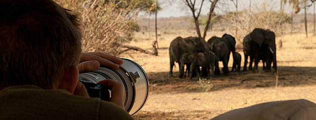 How much does the Nomad Tanzania Photographic Safari cost? The price for this photography tour is $8,250 (based on 2 people sharing a room). A single room can be arranged at a supplement of $1,225 (subject to availability).