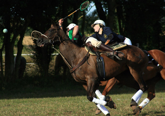 Polocrosse is a fast, furious, action-packed sport played on horseback - think rugby/lacrosse/polo and you'll begin to get the picture. The 2011 polocrosse World Cup was hosted here in the UK where the final was furiously fought out between South Africa and Zimbabwe and with three of the seven national teams coming from the dark continent (Zambia were also represented) the sport continues to thrive in the 3rd world too! There were over 400 registered playing members based in the UK as of 2011.