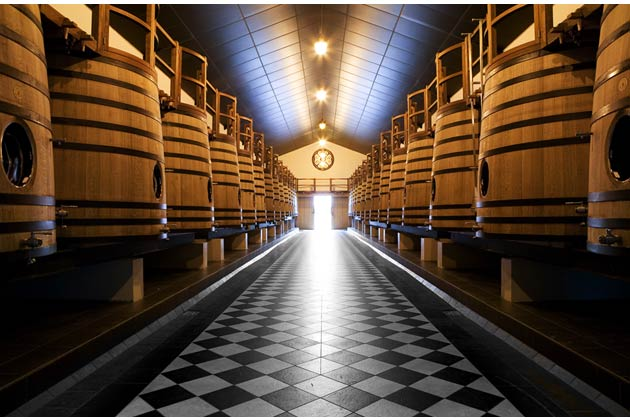 We also received an insight into the fermentation process which takes place in huge vats using wooden, concrete or steel structures, or a combination of two of those, and then proceeded to explore the dark, cool cellars to see the finished bottled items.