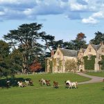 An Elizabethan Manor, A Classic Morgan and the English Countryside 6