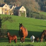 An Elizabethan Manor, A Classic Morgan and the English Countryside 7