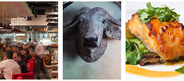 London's Mayfair is filled with hip haunts, so it's hardly surprising that the recent opening of Rextail, called for its reference to 'T-Rex' and 'oxtail' has fit right in and become one of them.