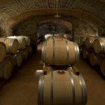 Santa Margherita Wine Group - 80 years of Italian history in a wine bottle