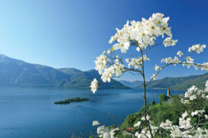 Ticino's Lesser-Known Lake Towns Take The Crown 6