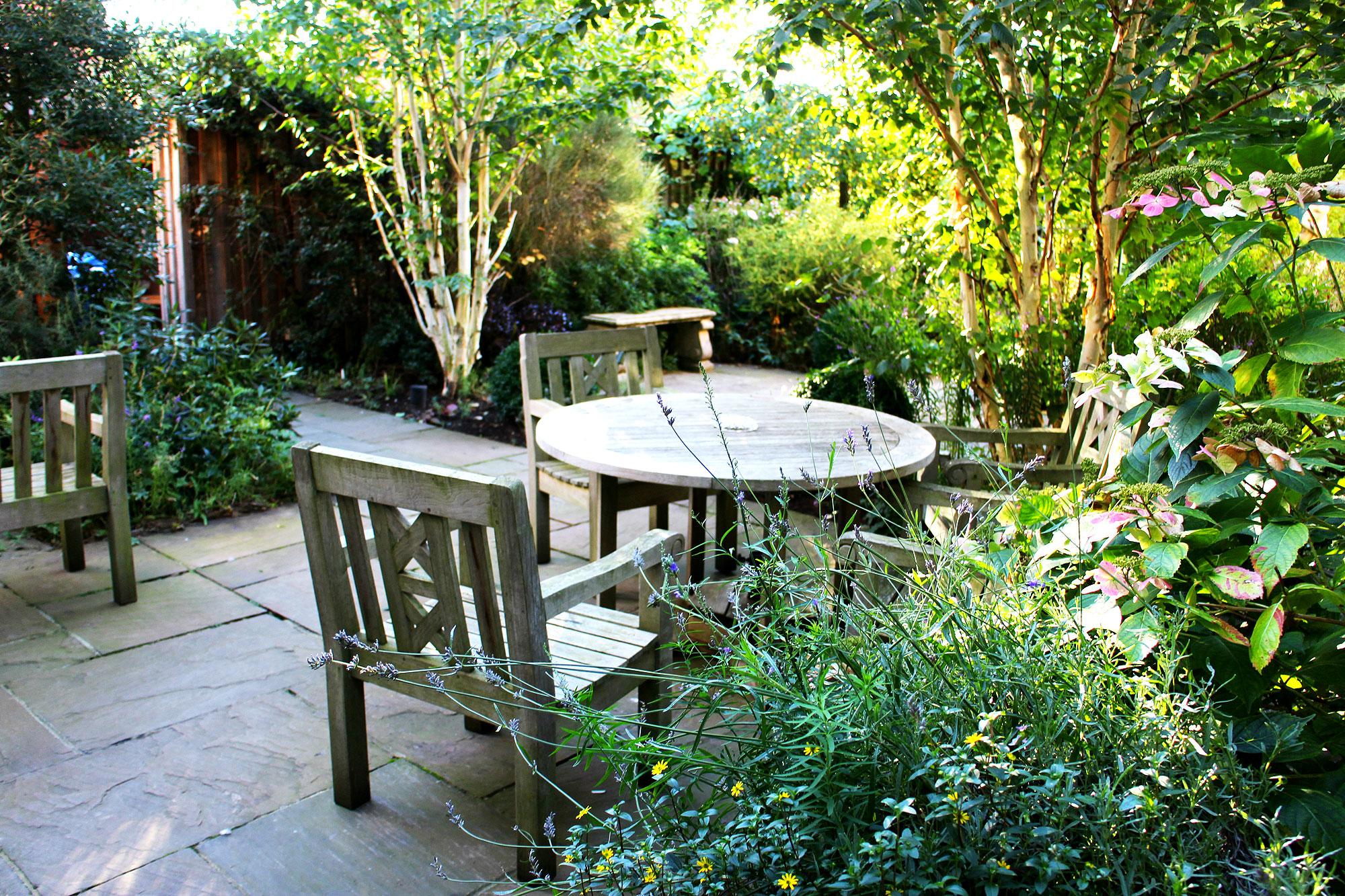 The Vine House Garden