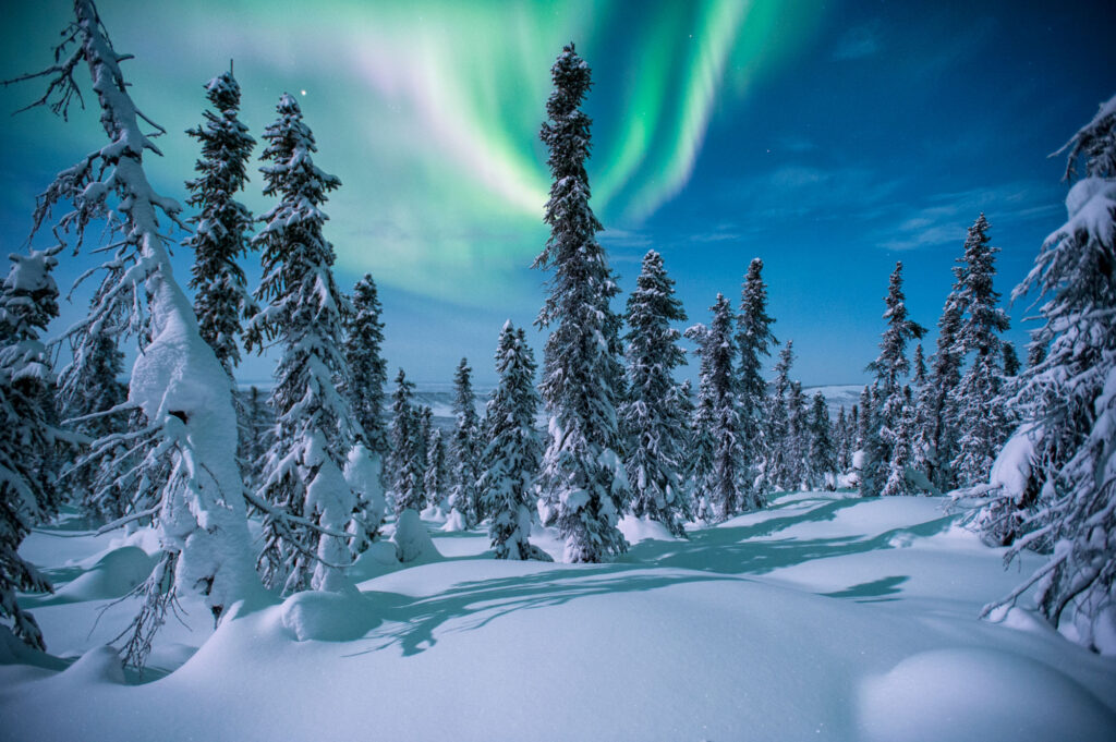 Yukon - Winter Playground & Northern Lights