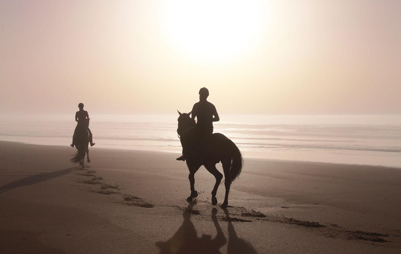 The Majesty Of Mazagan Beach & Golf Resort 6