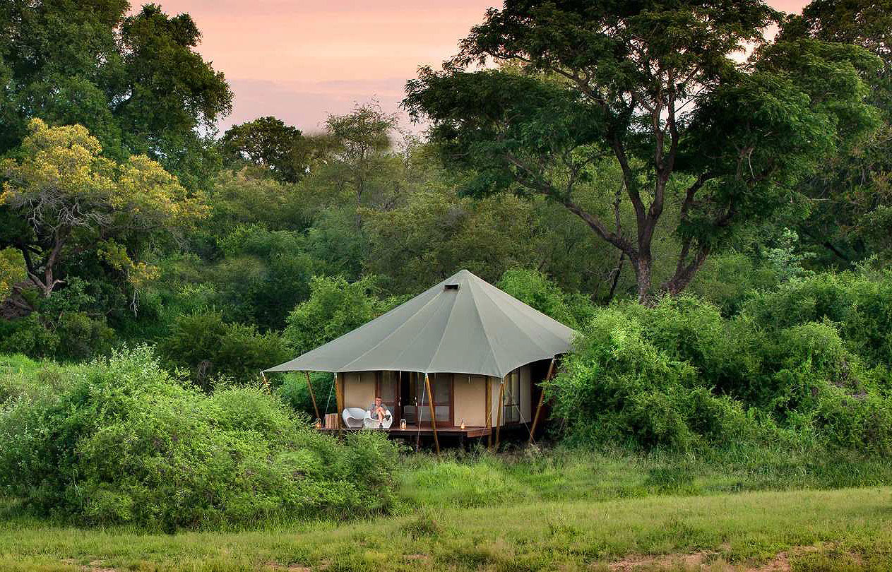 Ngala Tented C& & Ngala Tented Camp Glamping South African Style - Luxurious Magazine