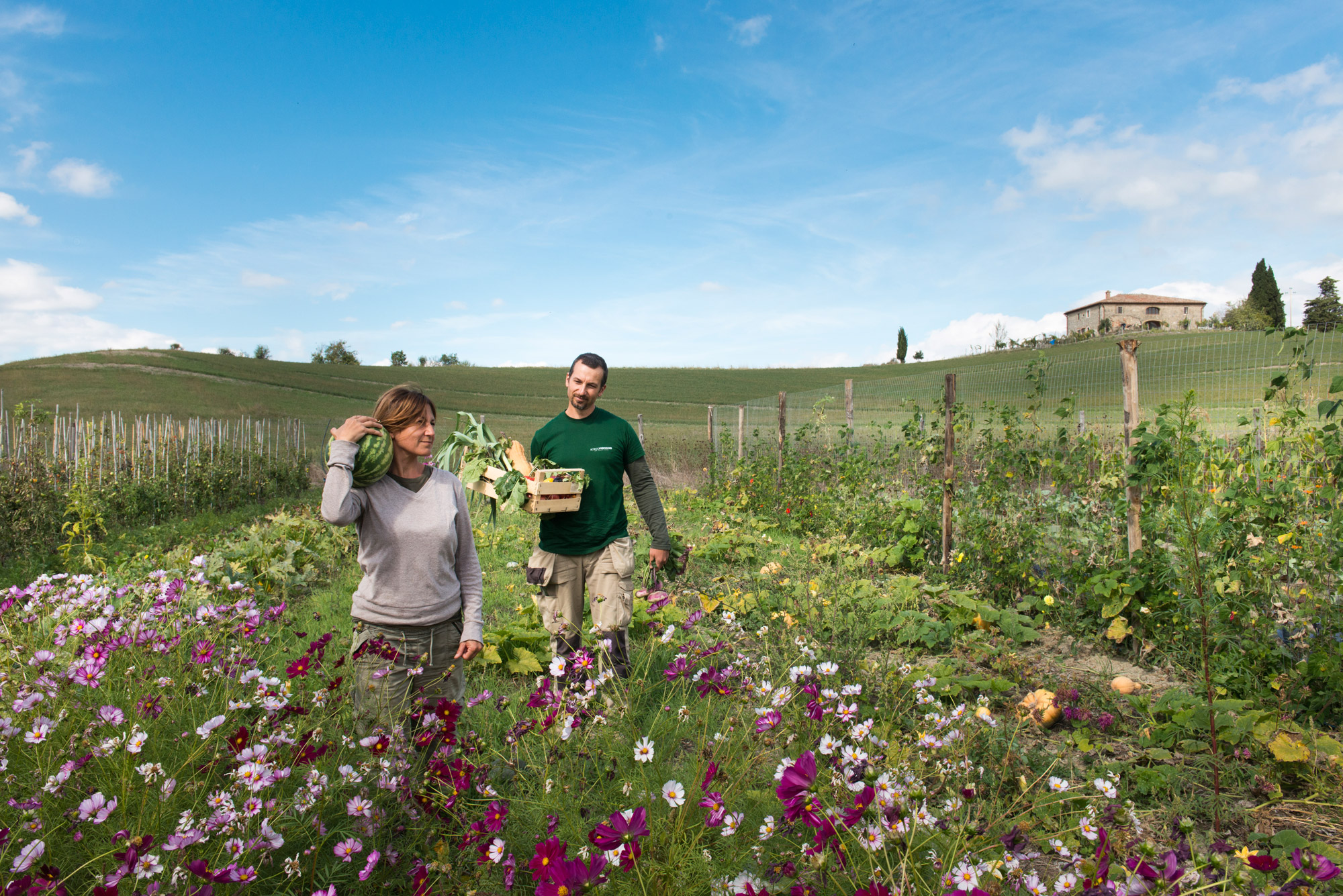 Borgo Pignano Organic Farm