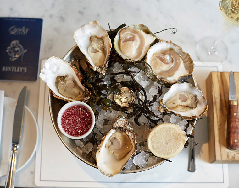 Bentley's Oyster Bar& Grill - 100 Years Of Fizz And Oyster Shucking