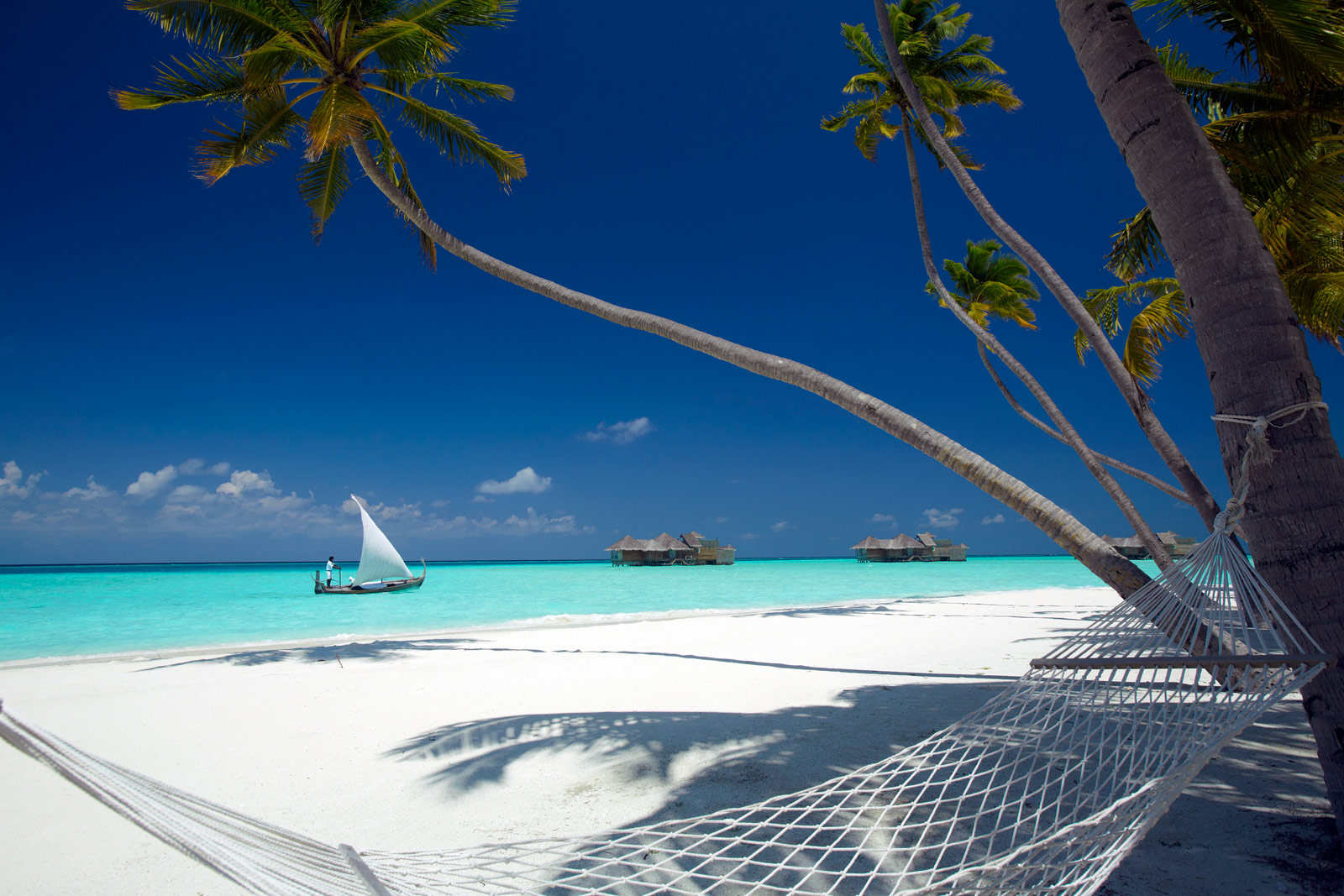 Surf Paradise Found At Gili Lankanfushi In The Maldives 6