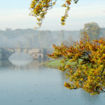 Experience Autumn In Its Full Majesty At Blenheim Palace 7