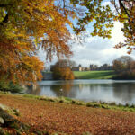 Experience Autumn In Its Full Majesty At Blenheim Palace 8