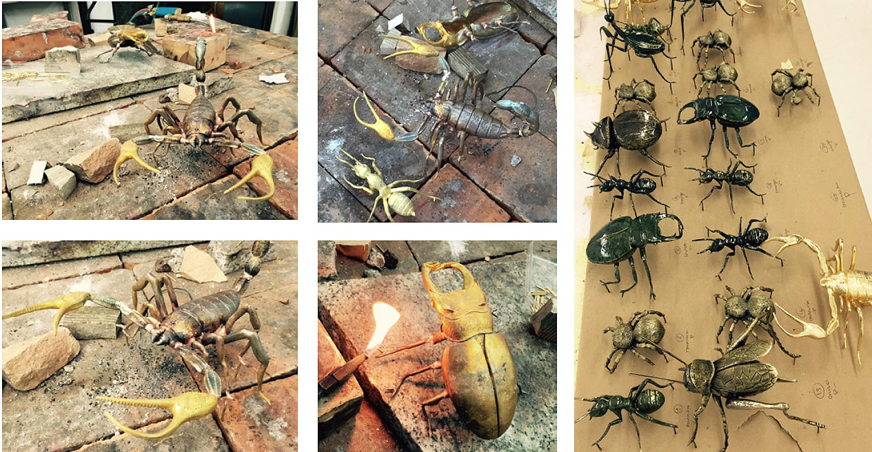 The extraordinary bugs on in the Boca do Lobo Metamorphosis Series
