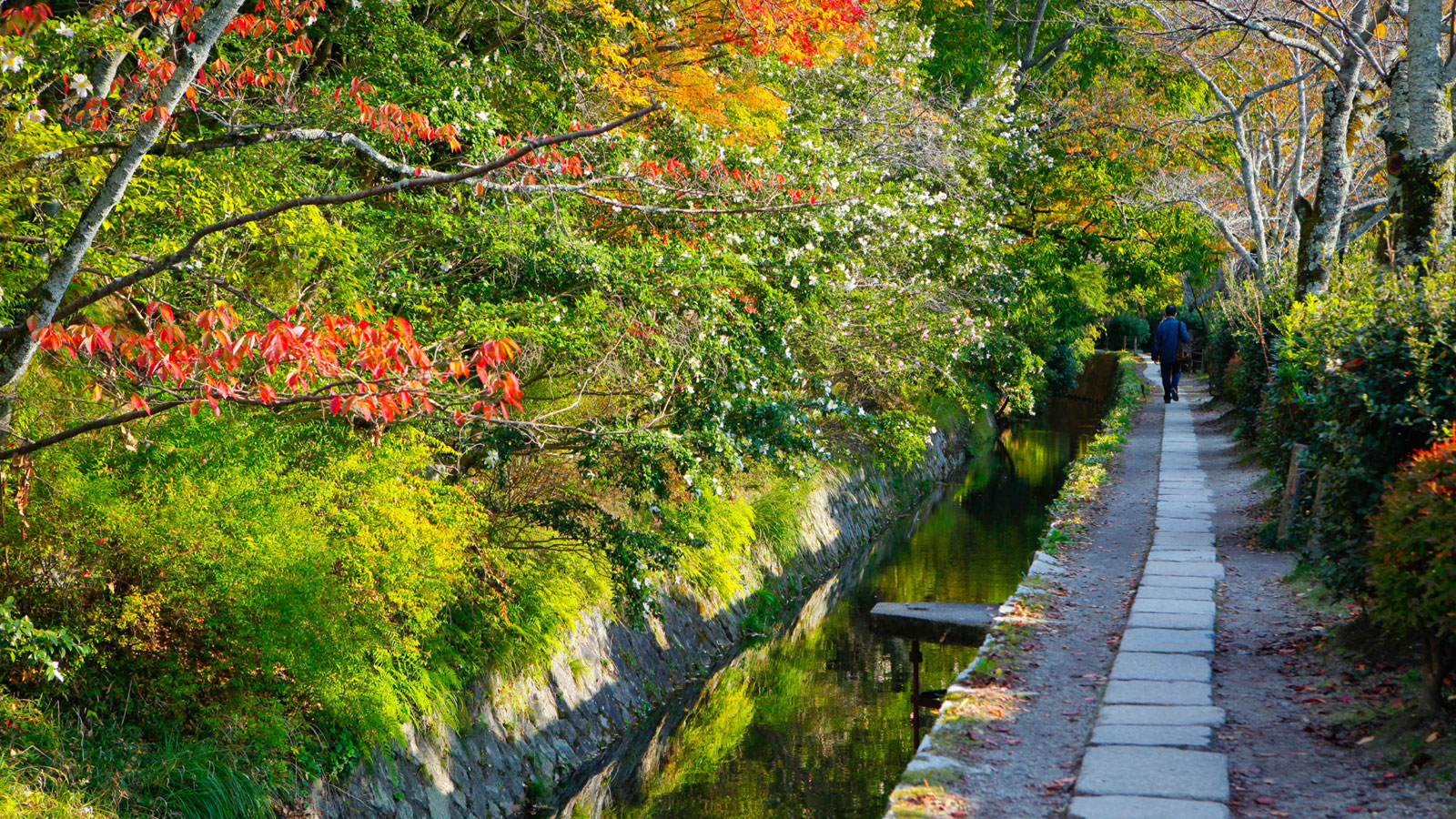 Four Seasons Hotel Kyoto Open's In Japan's Ancient Imperial Capital 9