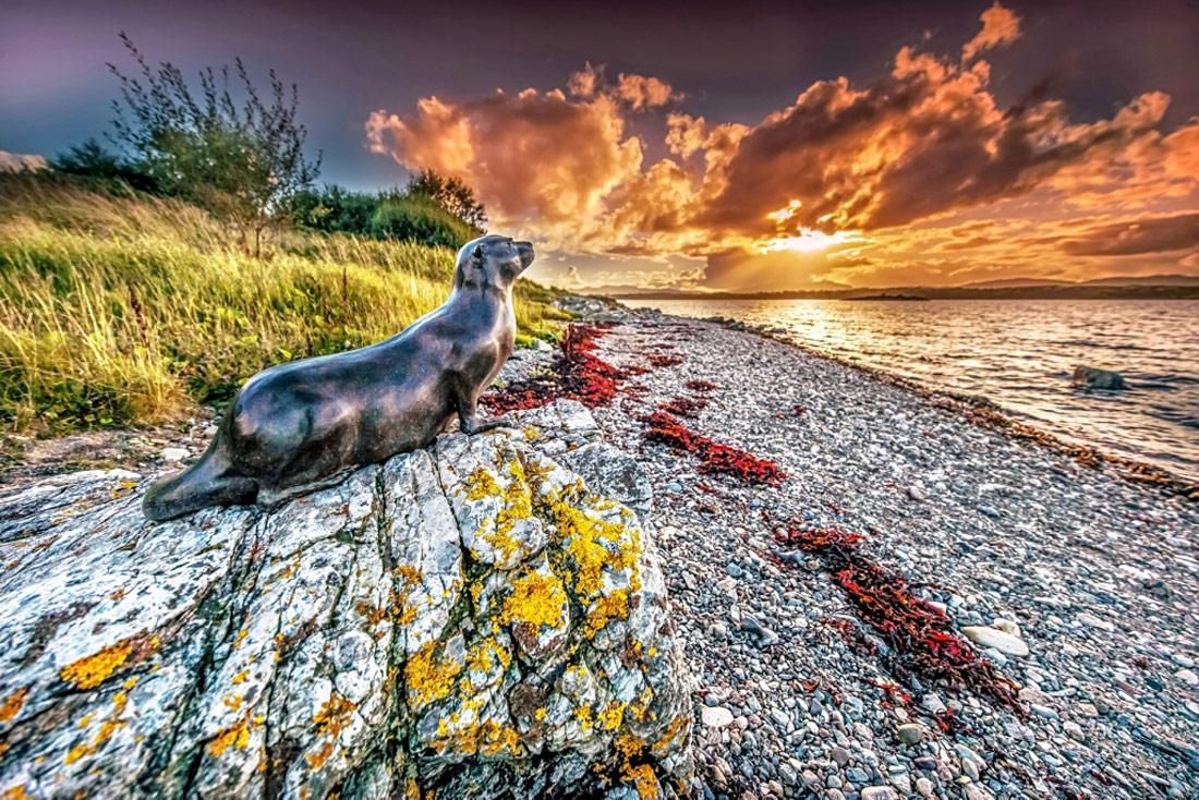 Isle of Eriska Otter - West Scotland