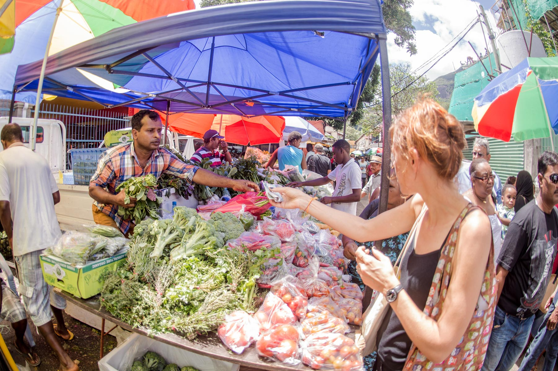 Market-in-Victoria-Seychelles