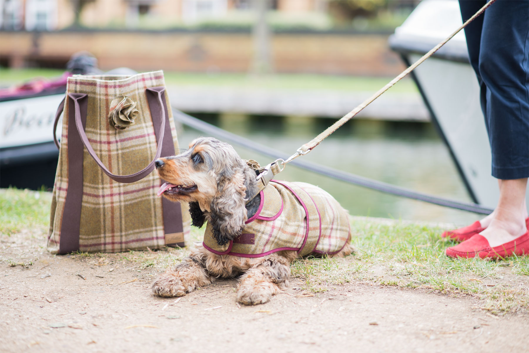 Lifestyle Brand Hettie Leads the Way in Premium Pet Coordination