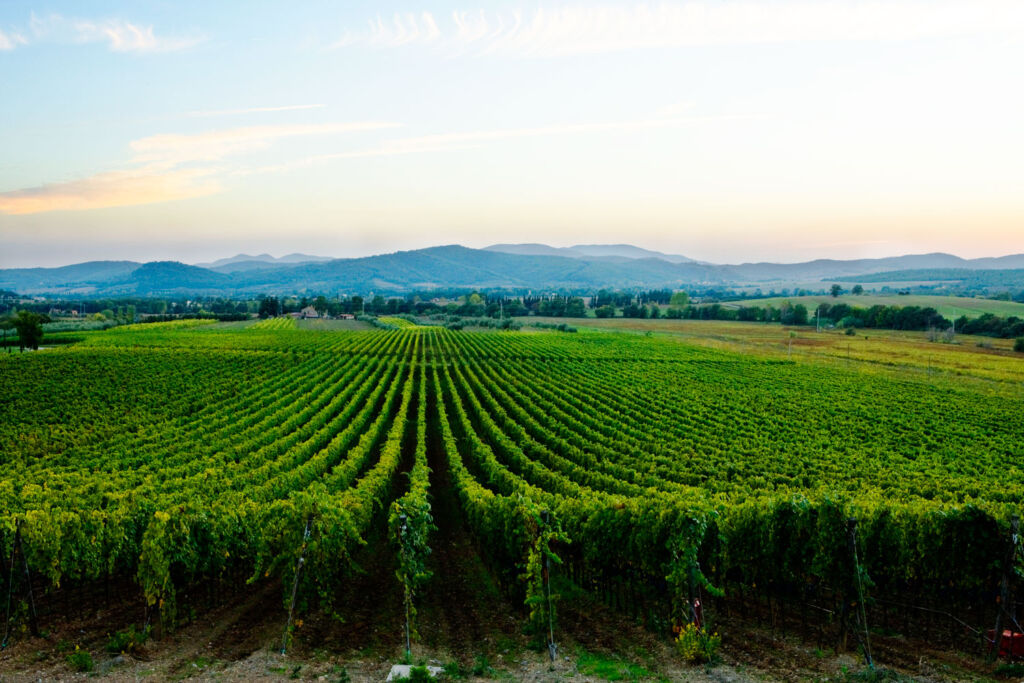 Luxury Tuscany: An Insider's Guide On Where To Stay 2