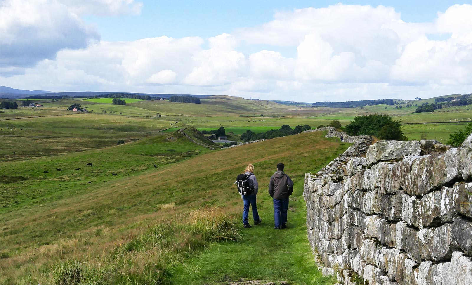 Walking the Wall with Wild Dog Outdoors in Northumberland 10
