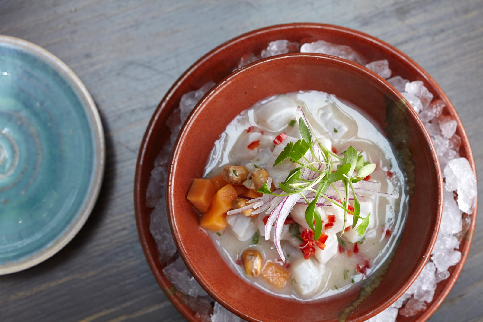 A Flavour of Latin America at Coya Angel Court 7