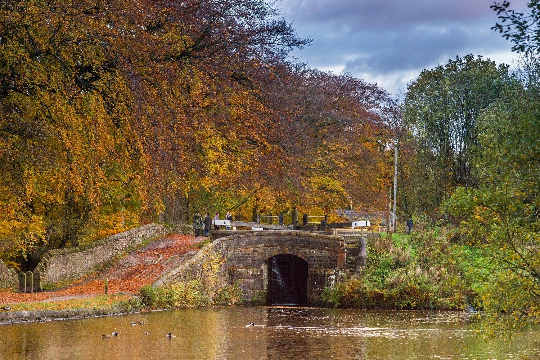 Dazzling Displays of Autumn on Britain's Best-Loved Waterways 6