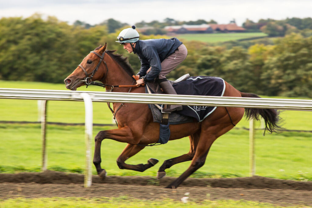 A Luxury Stay In Newmarket With The Jockey Club