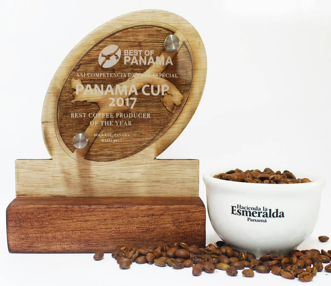 Esmeralda Geisha Canas Verdes Natural – The Most Expensive Coffee in the World 5