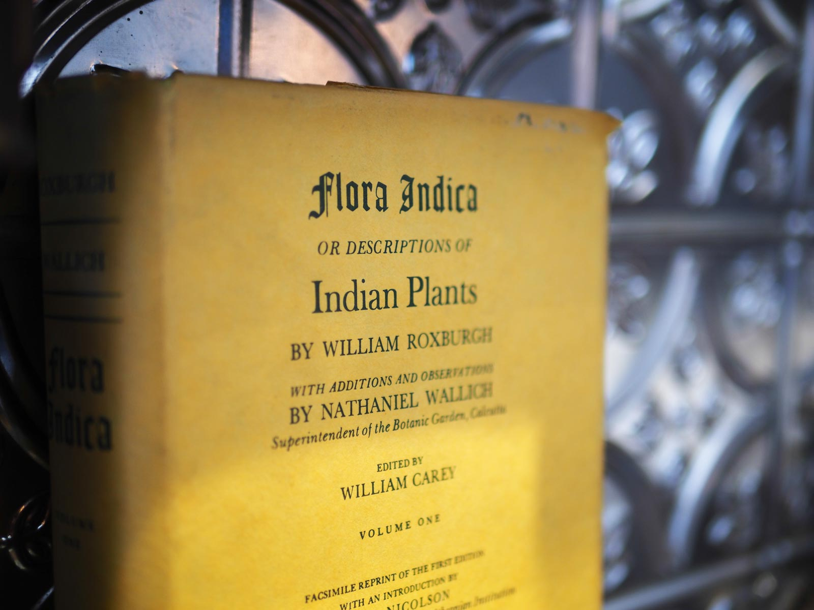 Flora Indica's Journey Of India's Exotic Herbs And Plants 2