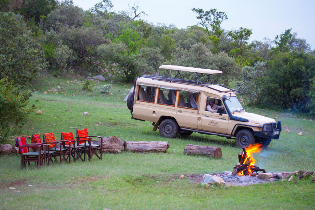 Our Landcruiser is the perfect height for game viewing