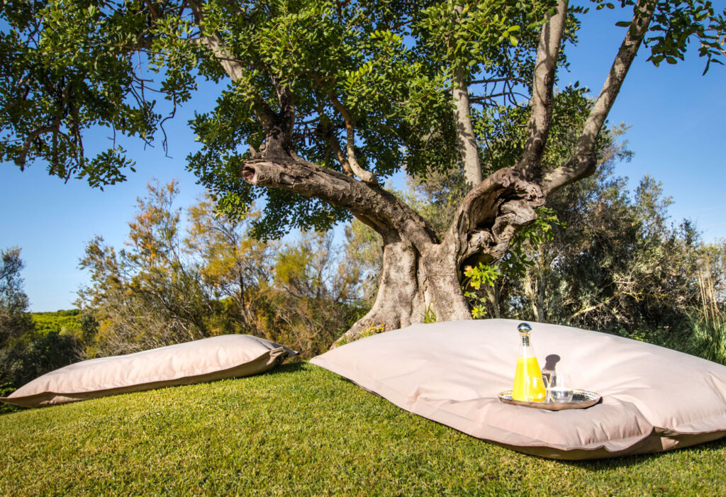 The Gift Of Luxury To Your Body At Portugal's Longevity Cegonha Country Club 11