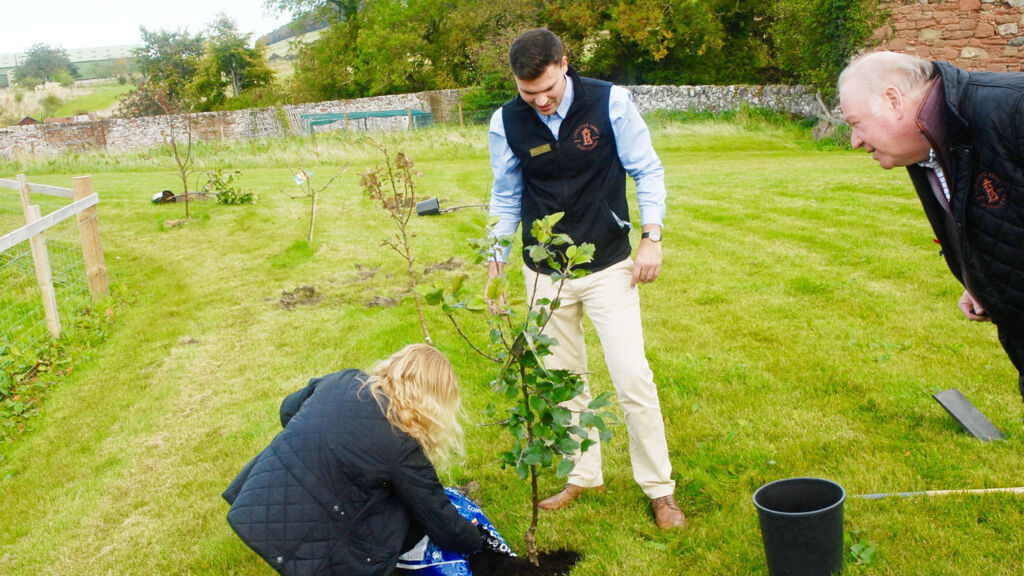 Planting apple trees at Lindores Abbey Distillery
