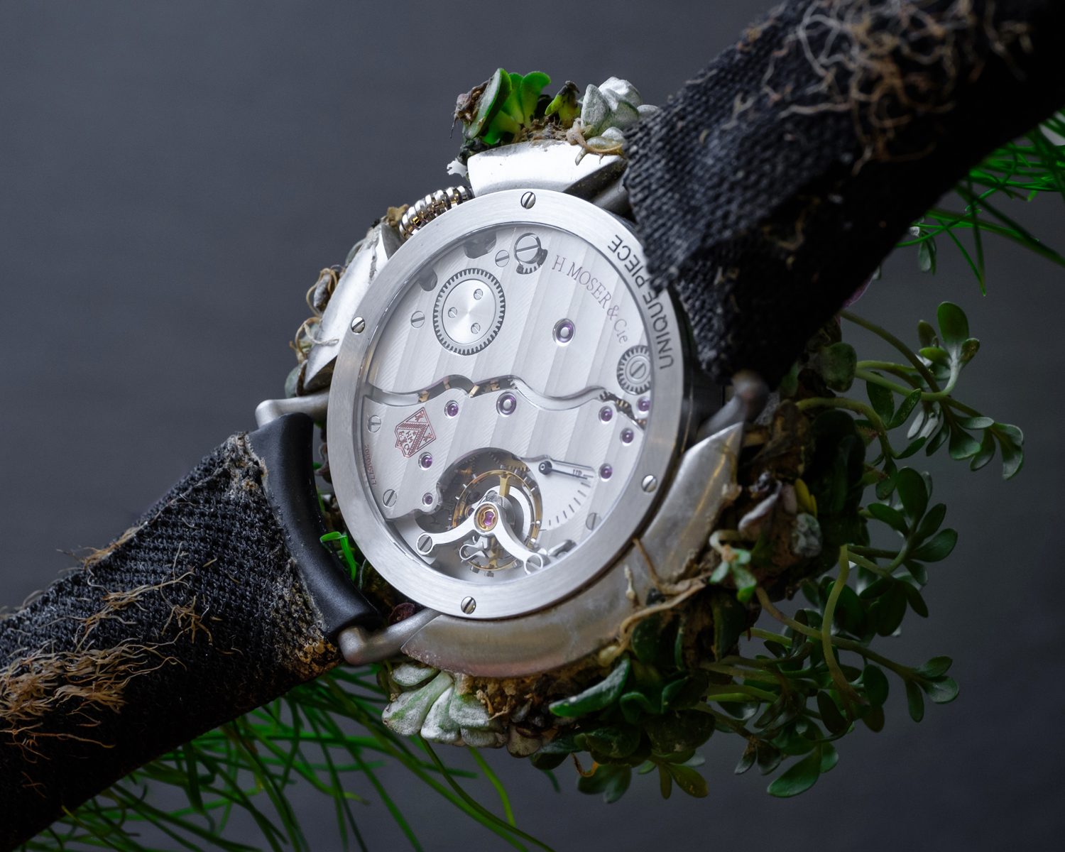 The Moser Nature Watch - A Unique Collaboration With Mother Earth 4