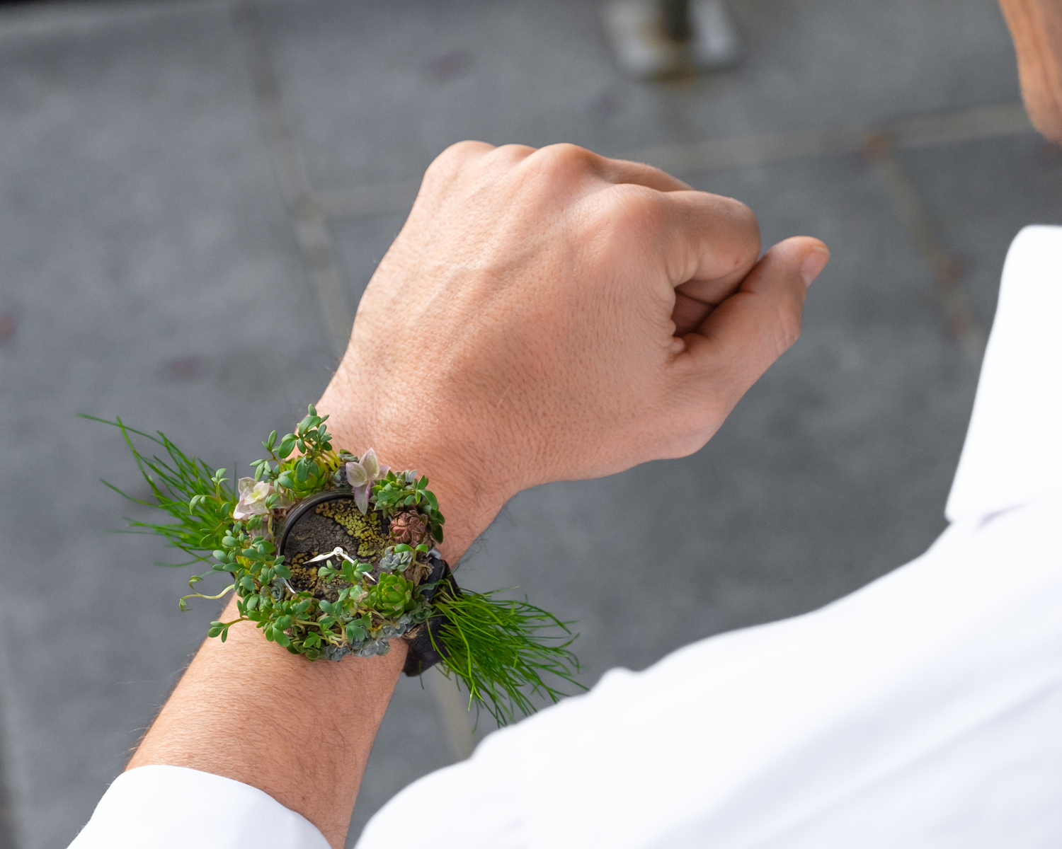 The Moser Nature Watch - A Unique Collaboration With Mother Earth 6