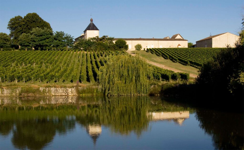 Bordeaux Vineyards Lead The Way in Sustainable Viticulture 7