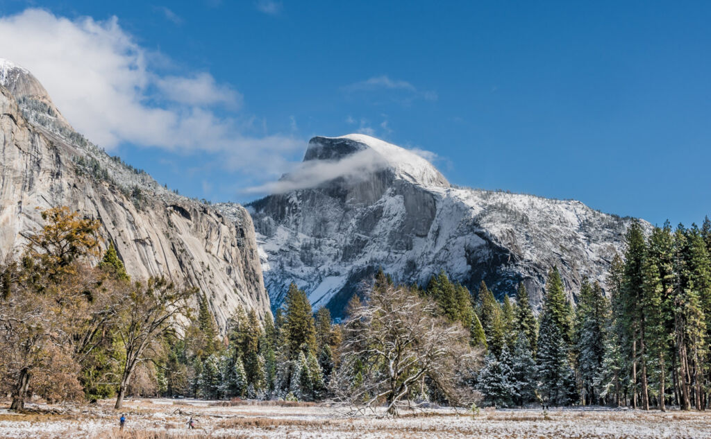 Celebrating the 130th Anniversary of Yosemite National Park in 2020 6