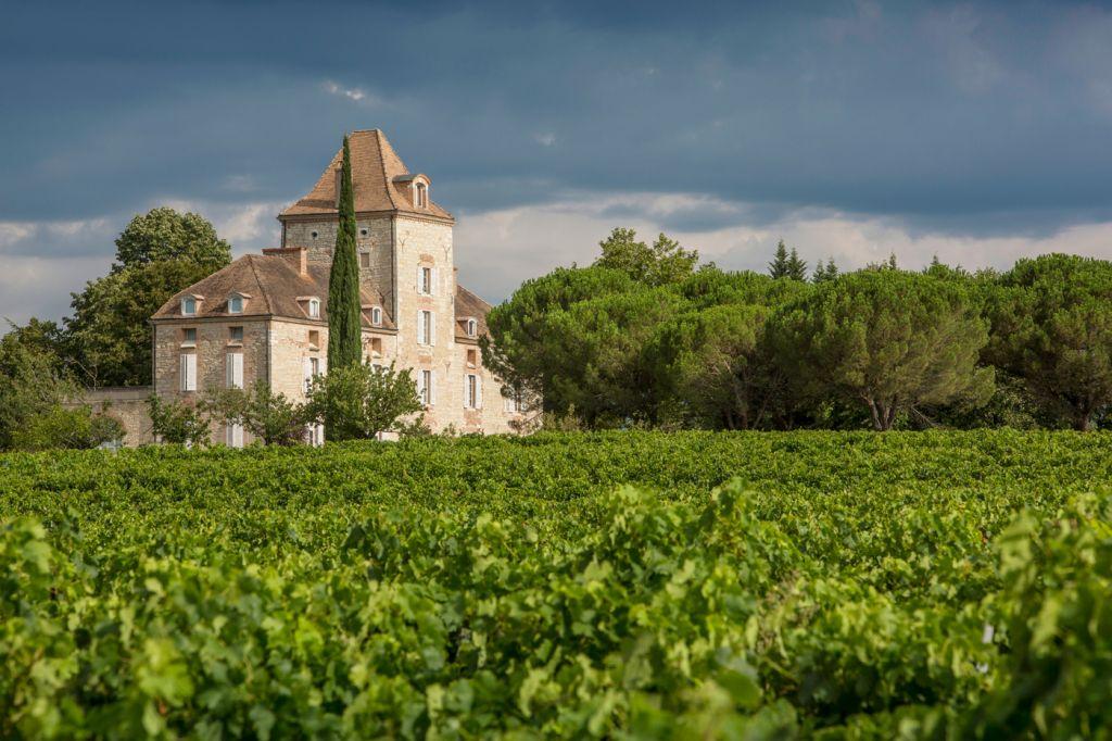 Château de Mercuès and vineyard