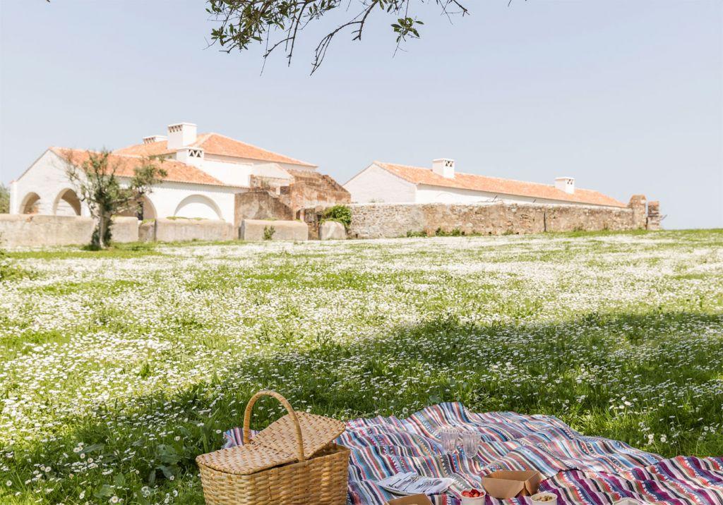 São Lourenço do Barrocal Launches New Nature Programme in the Alentejo 6