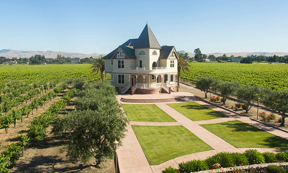 Tri Valley vineyard Northern California