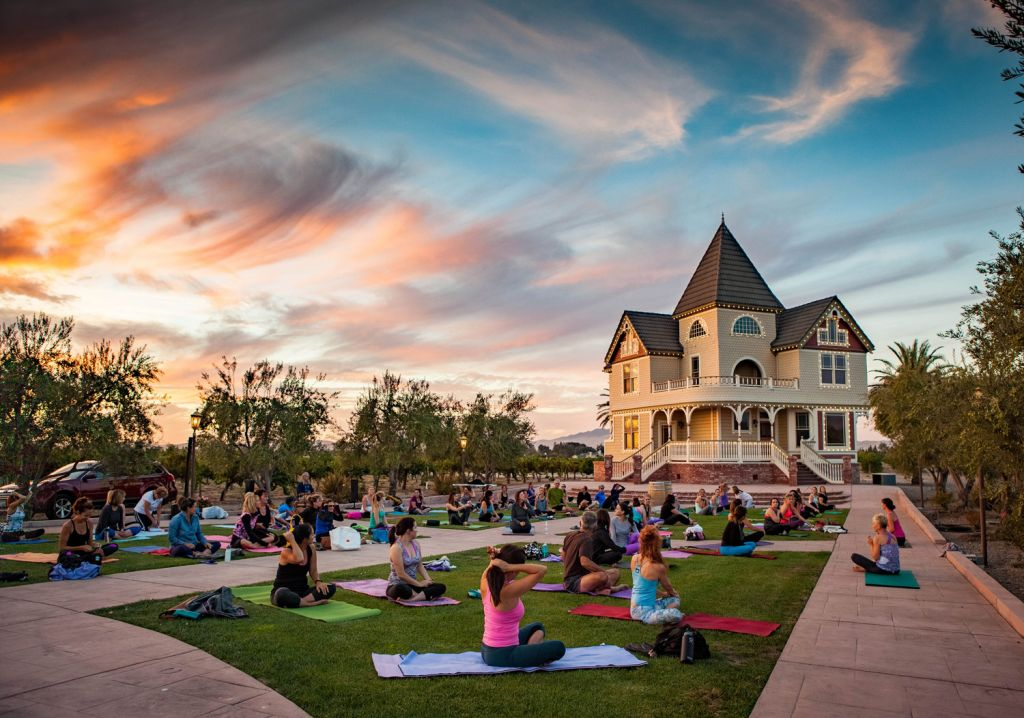 Yoga in the Vines Tri Valley Northern California