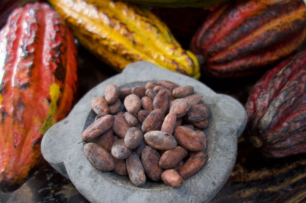 Firetree Chocolate Considers the Gender Inequality in Cocoa Production