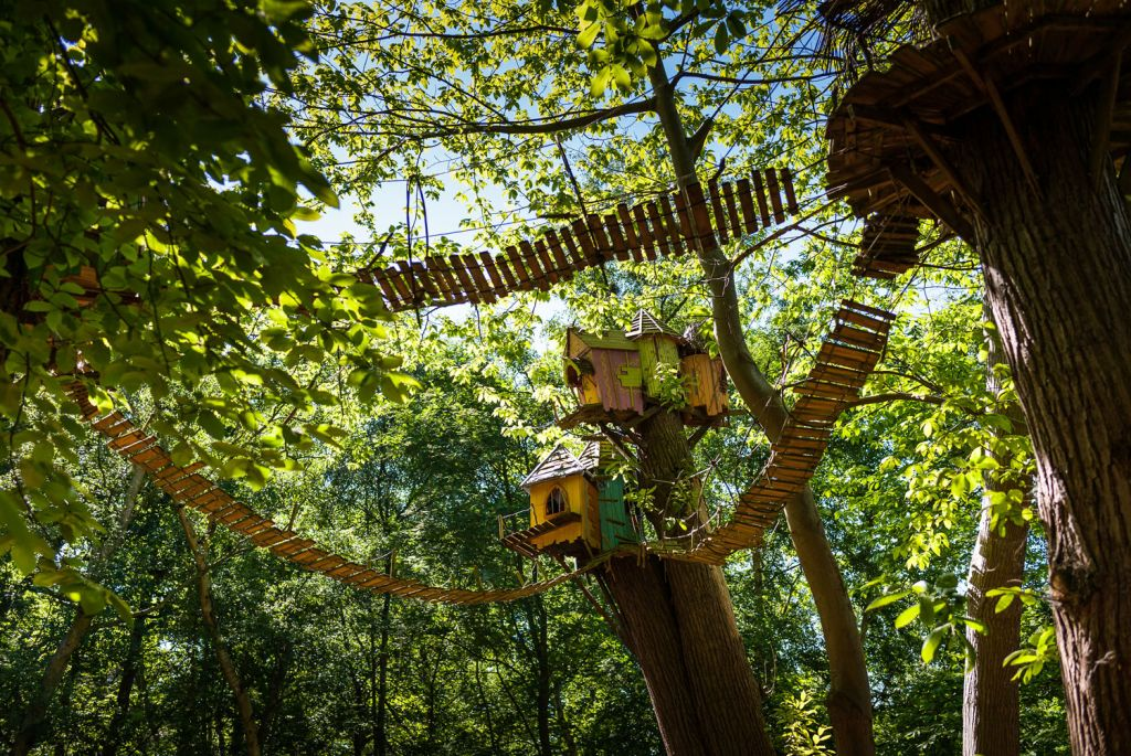 BeWILDerwood Cheshire treetop walkways and tree houses