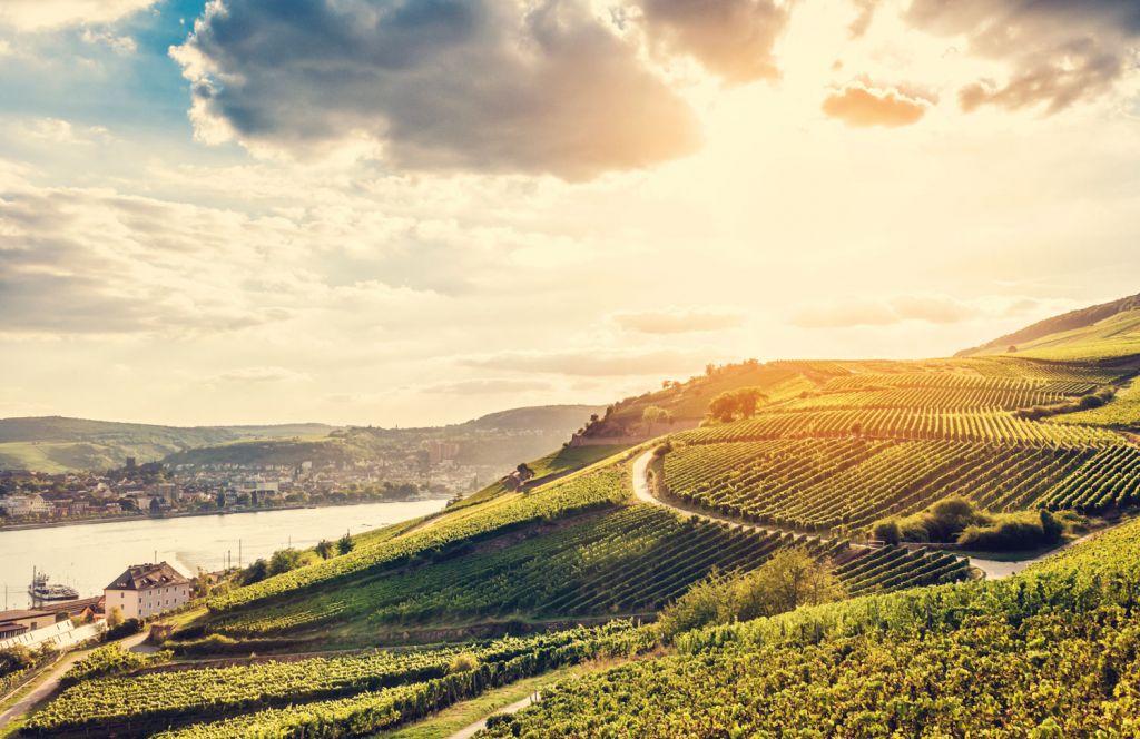 Emerald Waterways cruise up the Rhine
