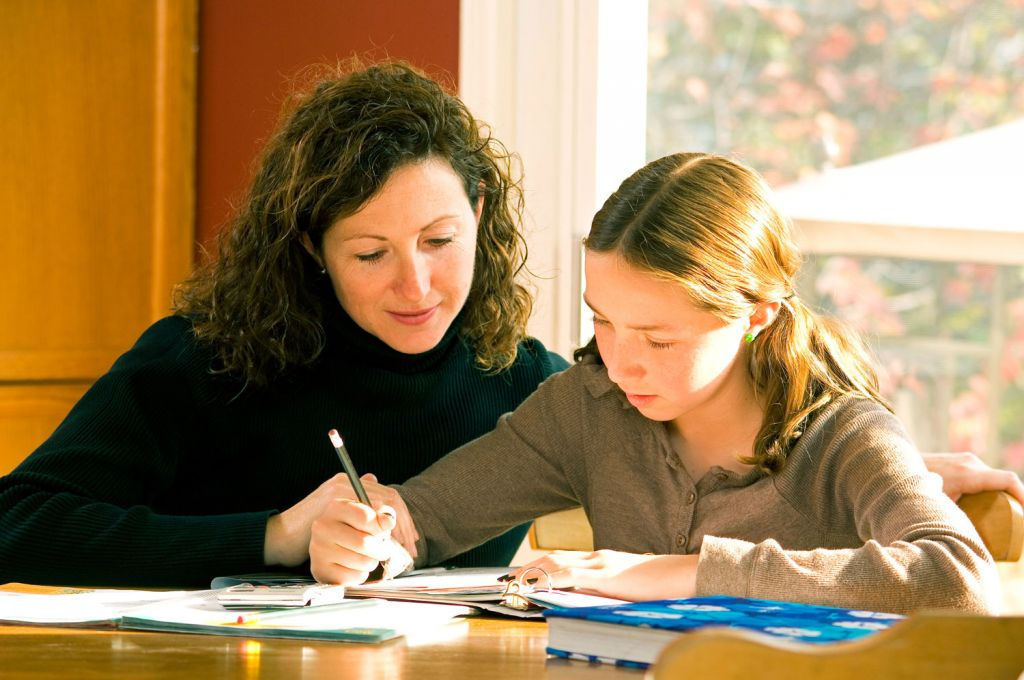 The Home-Schooling Survival Guide by Nicola Anderson at MyTutor